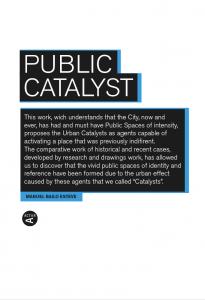 Public Catalyst