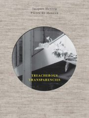 Treacherous-Transparencies_cover